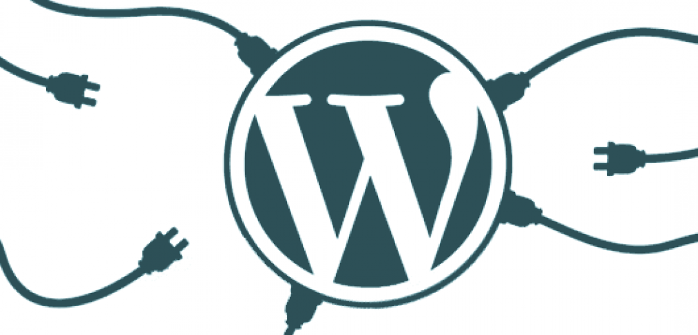 Wordpress Plugin Customization